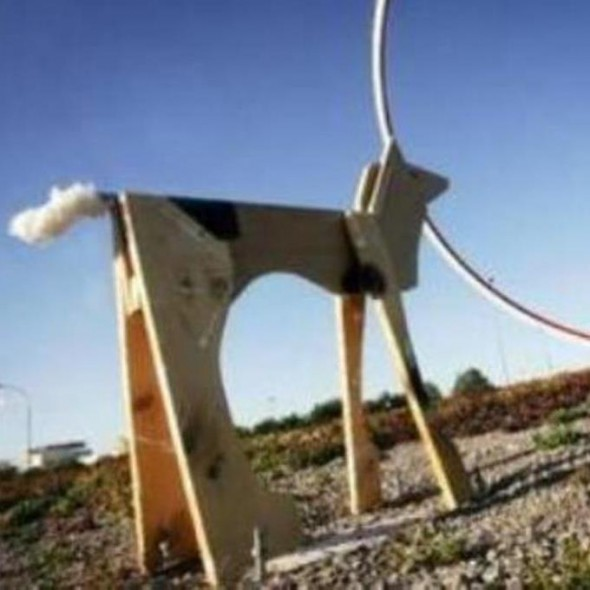 Rondellhund Slider Bild Extra BIG